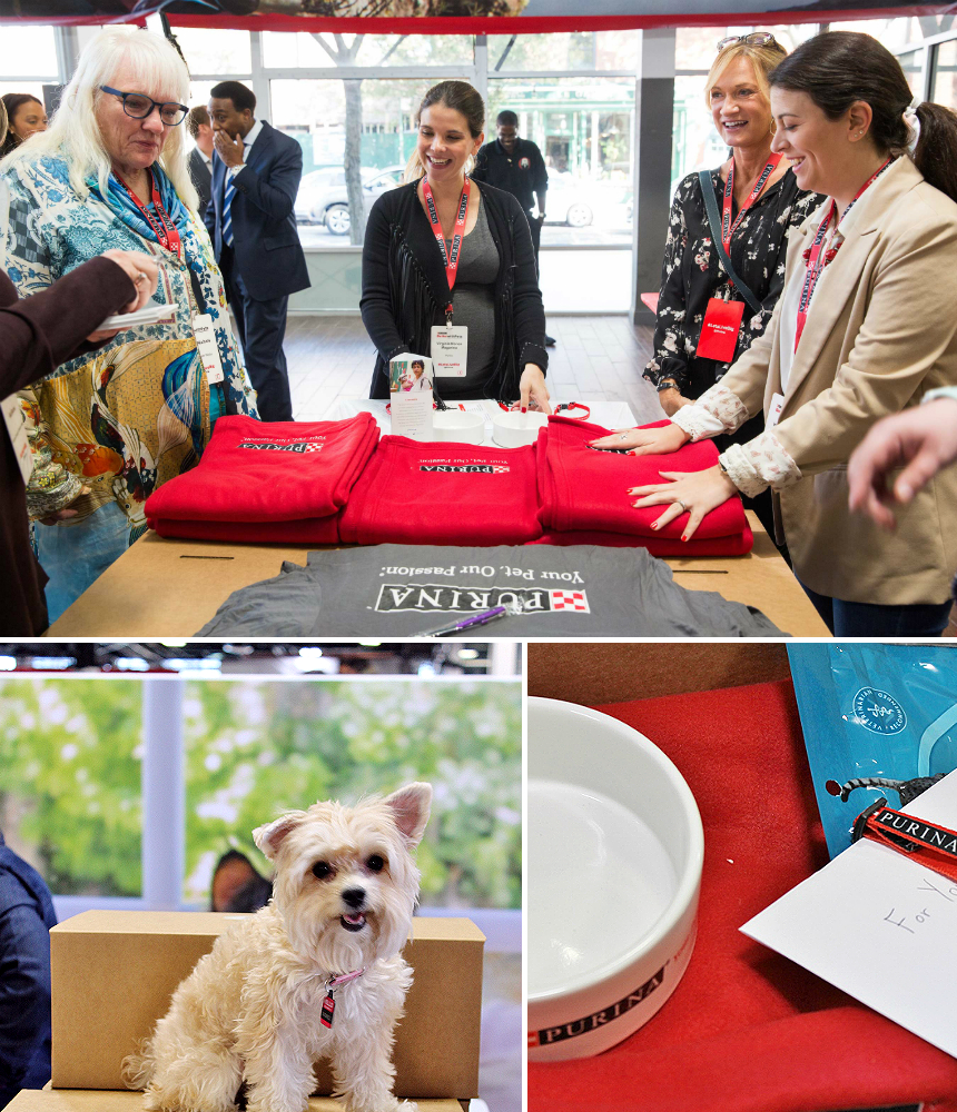 Attendees prepare welcome boxes for URI residents- The annual Nestle Purina #BetterWithPets Summit in Brooklyn, NY aimed to inspire through nutritional reserach, a puppy kitten therapy booth, and philanthropic initiatives. AD