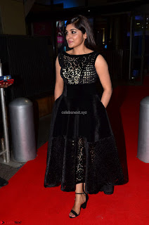 Niveda Thomas Black Sleeveless Cute Dress at 64th Jio Filmfare Awards South 2017 ~  Exclusive 046.JPG