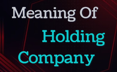 Meaning of Holding Company