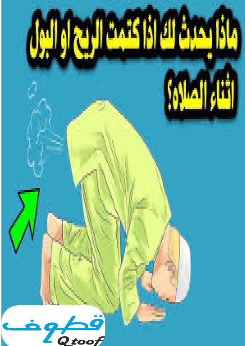 هل بعد خروج الريح يلزم غسل الدبر قبل الوضوء الموقع الرسمي لفضيلة الشيخ مصطفى العدوي