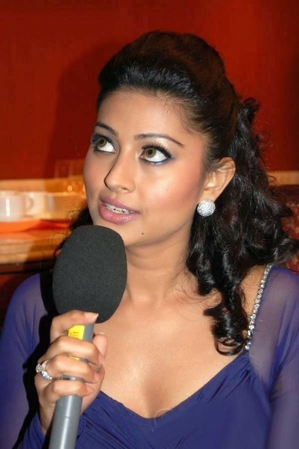 Actress Sneha Hot Photos - Tamil Actress-7704