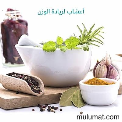 9 أعشاب فعّالة تساعدك على زيادة الوزن وفتح الشهية