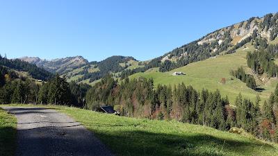 Am Glaubenbergpass, ca. 1100 m