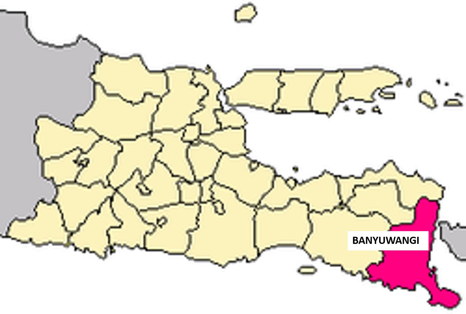 peta kabupaten banyuwangi