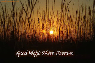 romantic good night cards