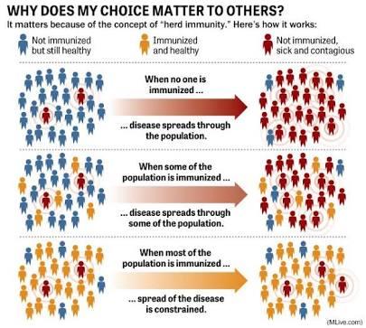 konsep kerja herd immunity kekebalan populasi
