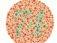 Apakah anda termasuk orang yang buta warna?