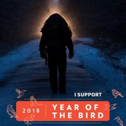 Ornithondar supports '2018 year of the bird'