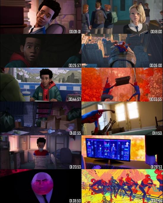 Spider-Man: Into the Spider-Verse 2018 BRRip 720p 480p Dual Audio Hindi English Full Movie Download