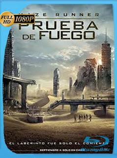 Maze Runner Prueba de Fuego (2015) HD [1080p] Latino [GoogleDrive] DizonHD