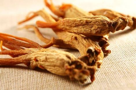 Top 5 Health Benefit Of Red Ginseng
