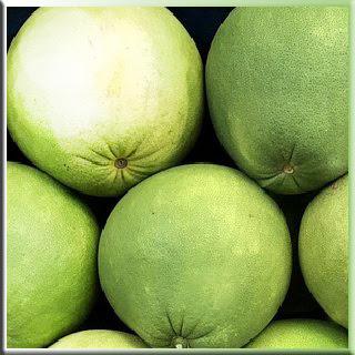 greyfurt meyve ağaç tropikal nareciye Ağaç Kavunu Citrus medica