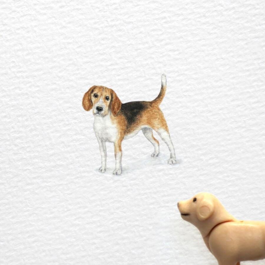 06-Beagle-Frank-Holzenburg-www-designstack-co