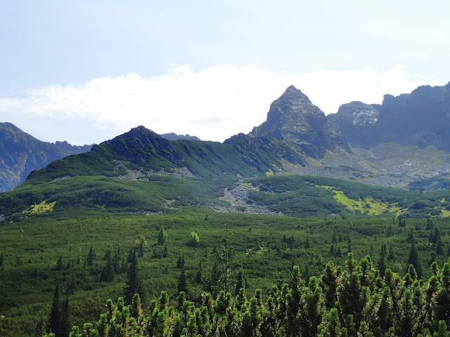 Zielona Dolina Gąsienicowa z górującym nad nią Kościelcem