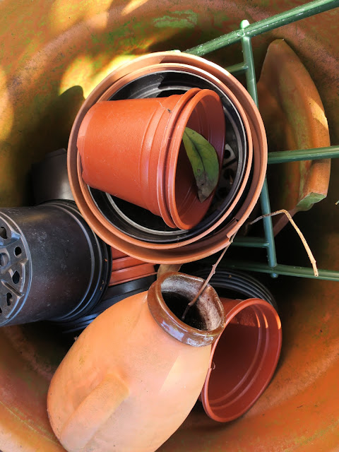 Plastic pots and a plastic frame and a pottery jug in a terracotta pot