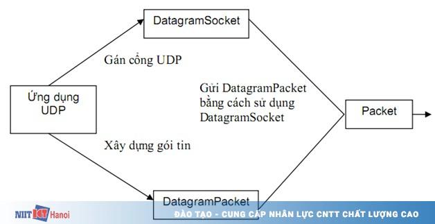 Học lập trình Java - Java DatagramSocket và DatagramPacket