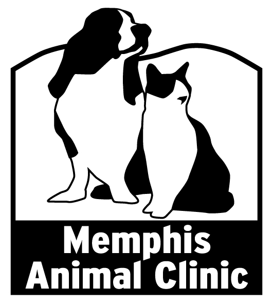 Memphis Animal Clinic