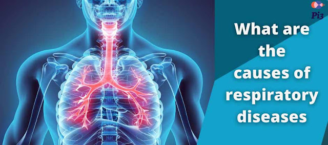 What are the causes of respiratory diseases