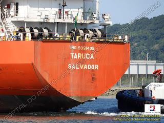 Taruca