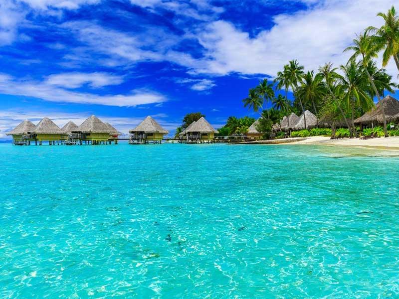 french polynesia,polynesia,french polynesia (country),french,tahiti french polynesia,french polynesia (island),french polynesia cruises,tourism french polynesia,bora bora french polynesia,travel to french polynesia,french polynesian food,moorea,french polynesia travel guide,french polynesian islands,bora bora french polynesia in 4k,top things to do french polynesia,france,french polynesia cruise paul gauguin