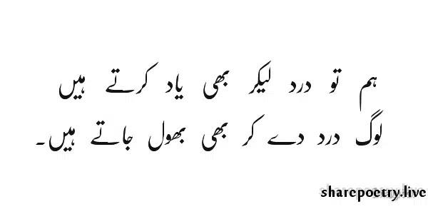 Hum To Dard Leker Bhi Yaad Karte Hain
