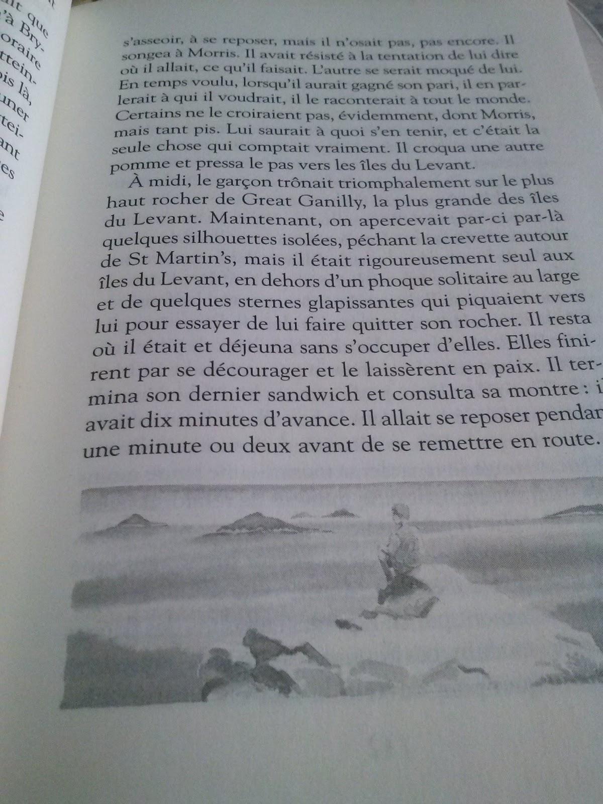 resume des chapitres du roi arthur de michael morpurgo