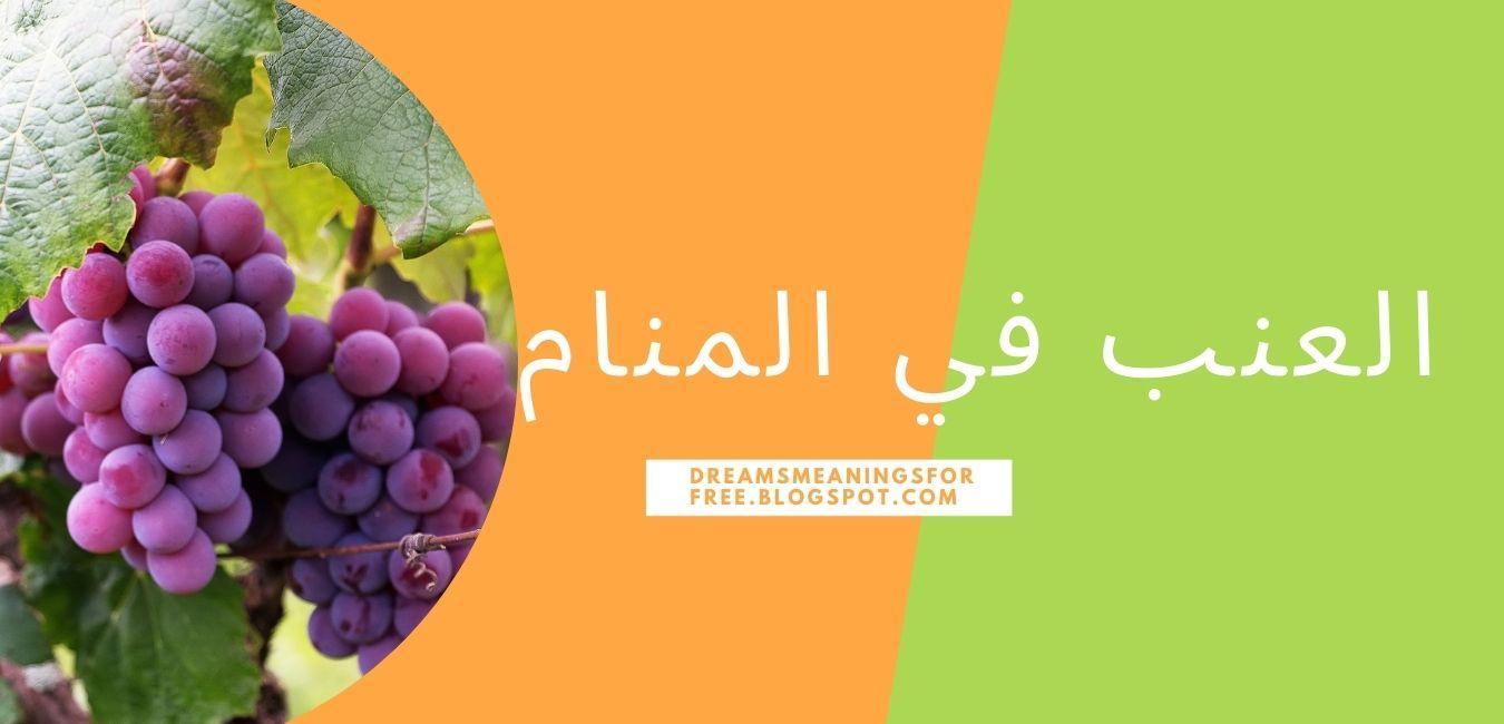 العنب في المنام شراء وأكل وقطف العنب الأبيض والأسود والأحمر