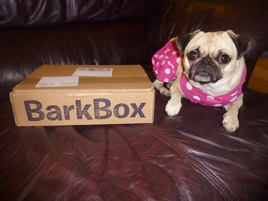 Our Very First Barkbox!!!