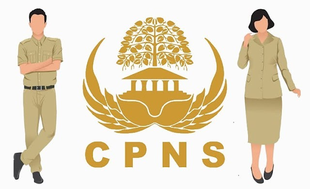 Hari Pendaftaran CPNS Tinggal Seminggu, Ada 4 Instansi Ini yang Masih Belum ada Pendaftar