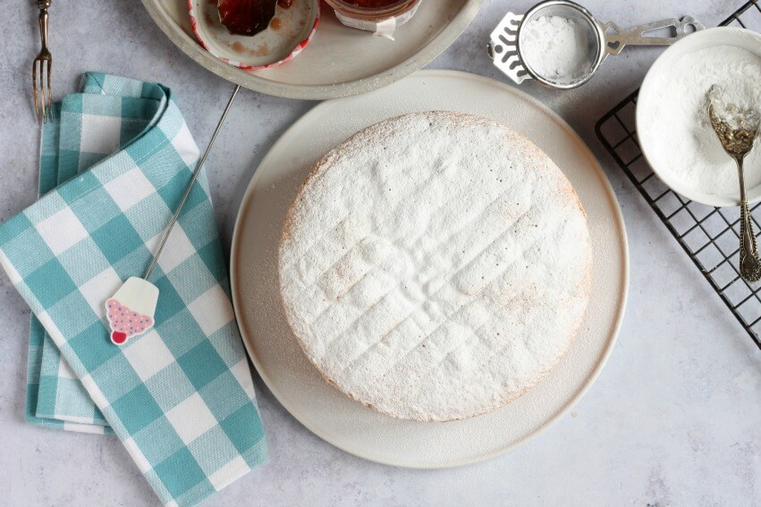 Fat free sponge cake with icing sugar