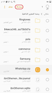 Whatsapp plus gold share chat file
