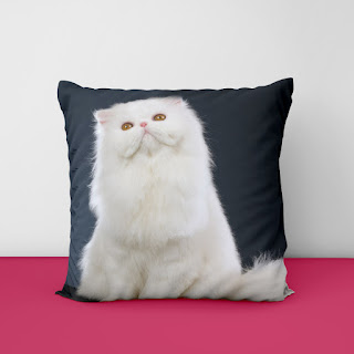 coastal pillow covers