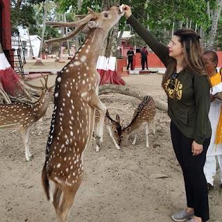 sambhavna seth animal love
