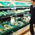 Γιατί η βόλτα του Κάμερον στο σούπερ μάρκετ μπορεί να φέρει Brexit!