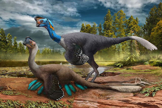 Researchers announce world's first dinosaur preserved sitting on nest of eggs with fossilized babies