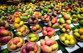 1.International  Mango Festival