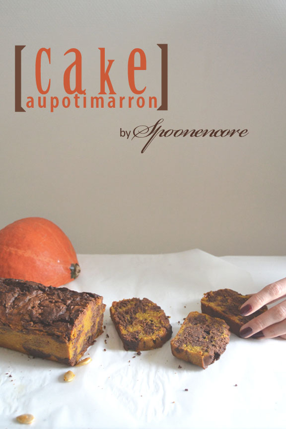 recette cake sans gluten chocolat potiron blog spoonencore