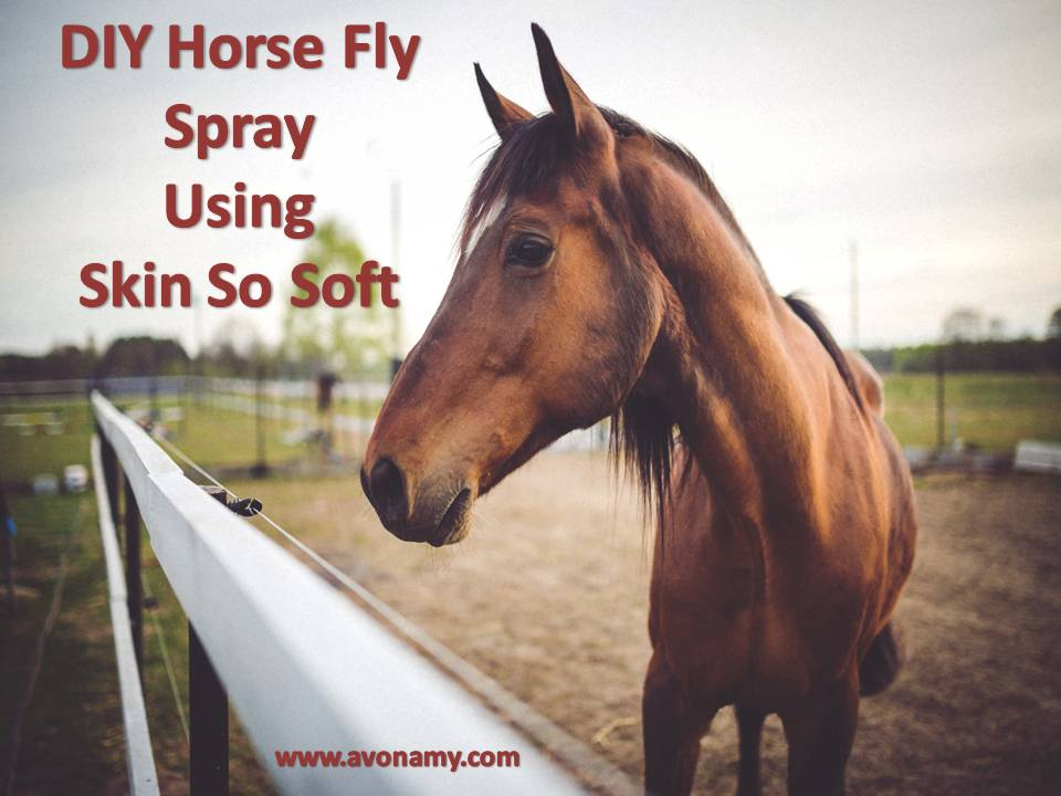 These homemade fly spray recipes have been collected from the Bridlewood website.