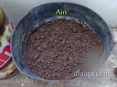 ratakan tanah sampai biji tertutup tanah (pot Ain)