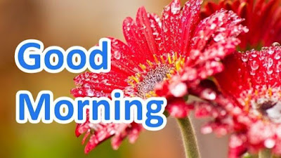 Good Morning Message for Whatapp