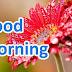 Good Morning Message for Whatapp.