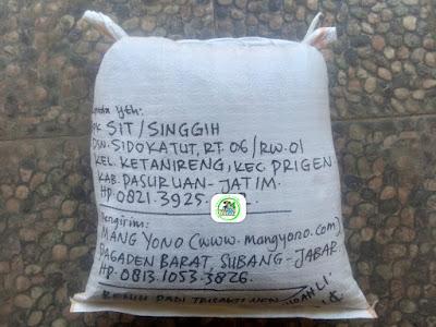 Benih padi yang dibeli     SIT Pasuruan, Jatim.  (Setelah packing karung ).