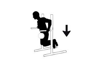 10 Bodybuilding Exercises : Part 2