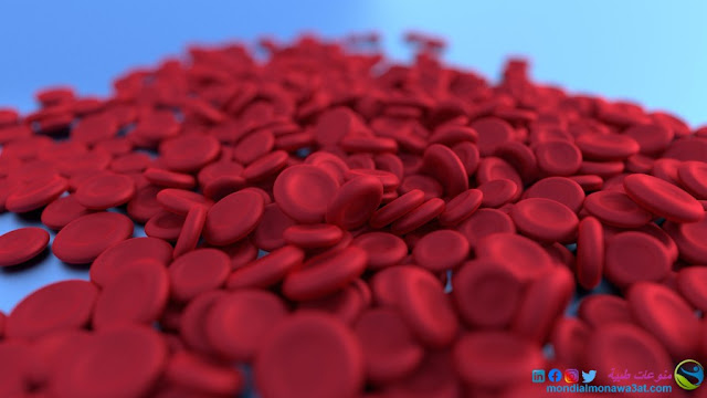 اعراض الانيميا، اسبابها و كيفية علاجها- فقر الدم عن الاطفال: فقر الدم عند الحوامل