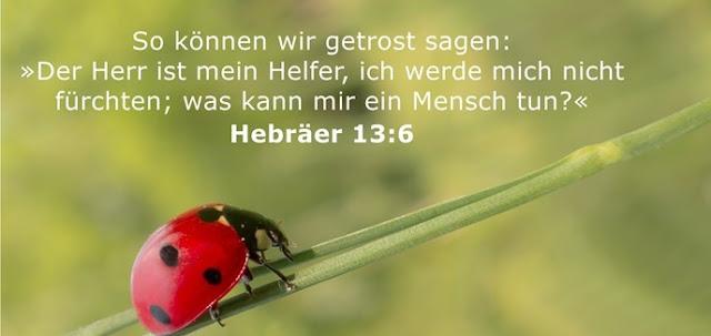 So können wir getrost sagen: »Der Herr ist mein Helfer, ich werde mich nicht fürchten; was kann mir ein Mensch tun?«