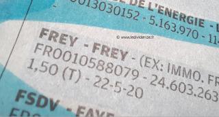 action Frey dividende exercice 2020