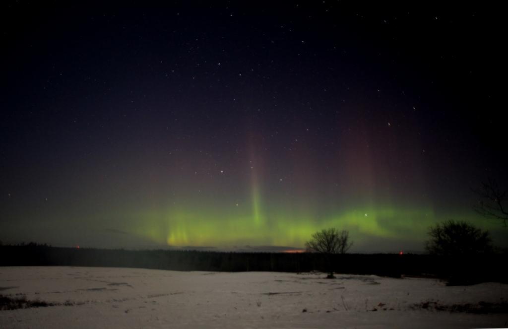 Zorza polarna sfotografowana w noc z 16 na 17.02.2016 r. (Credit: Guntis Grandans, Plavinas, Łotwa)