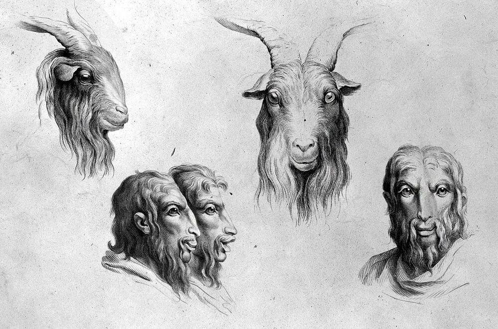 12-Goat-Animal-Transformations-Drawings-from-the-1600s-www-designstack-co