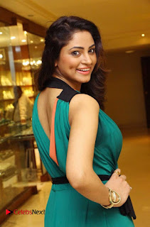 Actress Shilpi Sharma Pictures in Green Dress at D'sire Exhibition Launch 0007