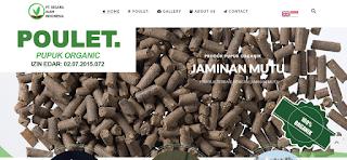 Jasa Pembuatan Website Murah, Jasa Pembuatan Website, Jasa Buat Website